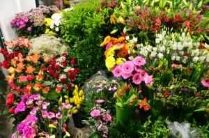 Řezané květiny | Autor: Magda Lebišová